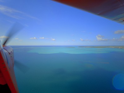 ISLAND-WINGS-Copyright-Island-Pictures-8